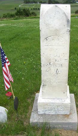 COLLINS, DAVID - Shelby County, Iowa | DAVID COLLINS