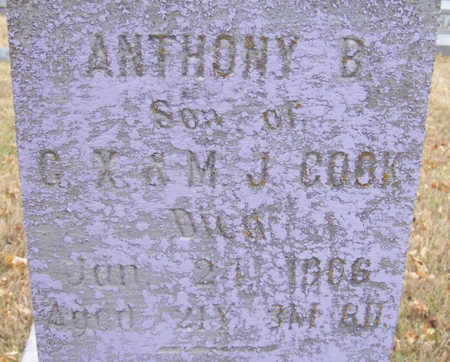 COOK, ANTHONY B. (CLOSE-UP) - Shelby County, Iowa | ANTHONY B. (CLOSE-UP) COOK