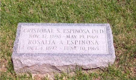 ESPINOSA, CRISTOBAL S. - Shelby County, Iowa | CRISTOBAL S. ESPINOSA