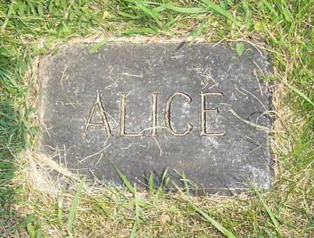FLYNN, ALICE - Shelby County, Iowa | ALICE FLYNN