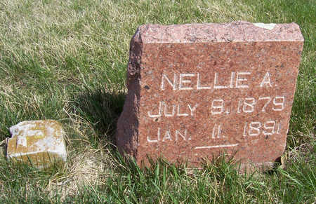 FORD, NELLIE A. - Shelby County, Iowa | NELLIE A. FORD