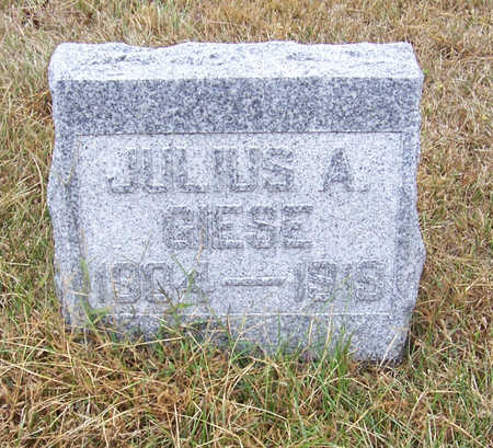 GIESE, JULIUS A. - Shelby County, Iowa | JULIUS A. GIESE