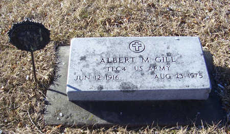 GILL, ALBERT M. (MILITARY) - Shelby County, Iowa | ALBERT M. (MILITARY) GILL