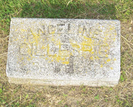 GILLESPIE, ANGELINE - Shelby County, Iowa | ANGELINE GILLESPIE