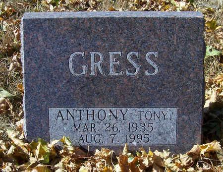 GRESS, ANTHONY - Shelby County, Iowa | ANTHONY GRESS