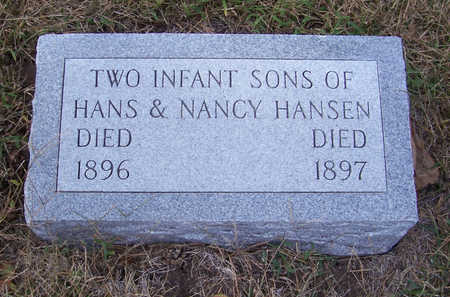 HANSEN, INFANT SONS (2) - Shelby County, Iowa | INFANT SONS (2) HANSEN