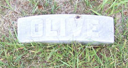 HAYWARD, OLIVE MAY - Shelby County, Iowa | OLIVE MAY HAYWARD