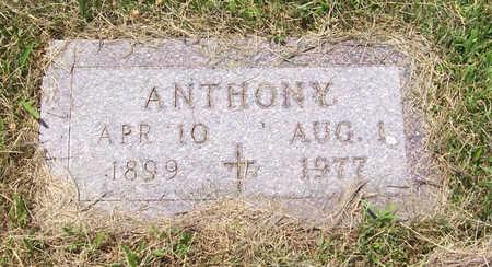 HEIMERMAN, ANTHONY - Shelby County, Iowa | ANTHONY HEIMERMAN