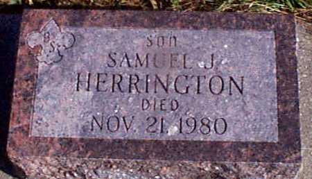 HERRINGTON, SAMUEL J - Shelby County, Iowa | SAMUEL J HERRINGTON