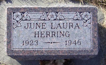 HERRING, JUNE LAURA - Shelby County, Iowa   JUNE LAURA HERRING