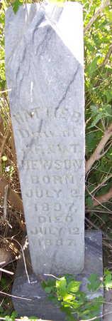 HEWSON, HATTIE B. - Shelby County, Iowa | HATTIE B. HEWSON