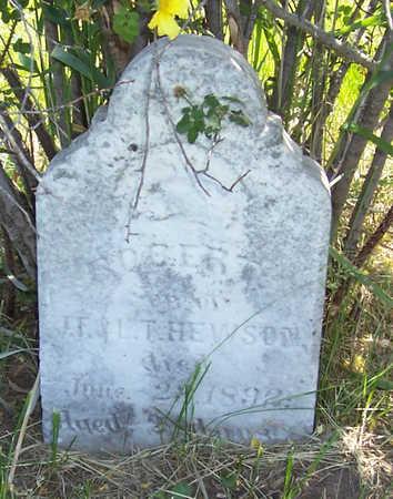 HEWSON, ROBERT - Shelby County, Iowa | ROBERT HEWSON