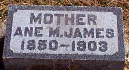 JAMES, ANNA M - Shelby County, Iowa   ANNA M JAMES