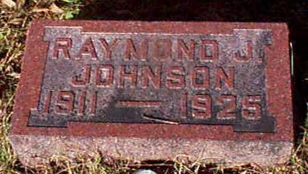 JOHNSON, RAYMOND J - Shelby County, Iowa   RAYMOND J JOHNSON