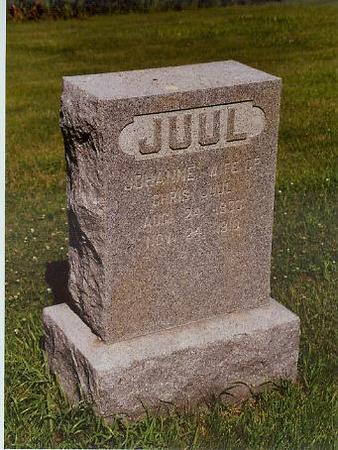 ZINK JUUL, ANNE JOHANNA MARIE - Shelby County, Iowa | ANNE JOHANNA MARIE ZINK JUUL