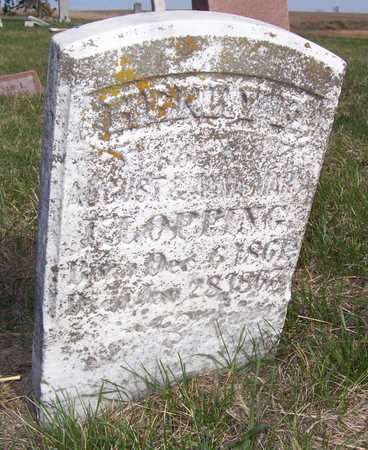 KLOPPING, HENRY F. - Shelby County, Iowa   HENRY F. KLOPPING