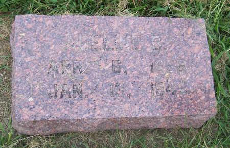 LANNING, ADELINE D. - Shelby County, Iowa   ADELINE D. LANNING
