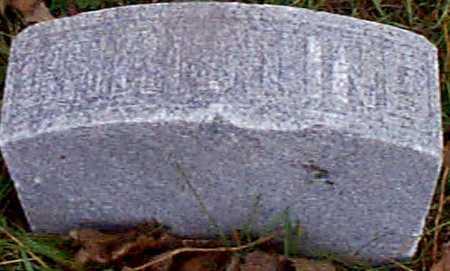 LARSEN, CHRISTINE - Shelby County, Iowa   CHRISTINE LARSEN