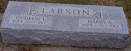 LARSON, HARRY A - Shelby County, Iowa | HARRY A LARSON
