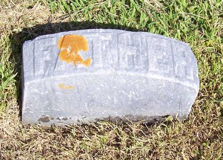LINE, SAMUEL F. (FATHER) - Shelby County, Iowa   SAMUEL F. (FATHER) LINE