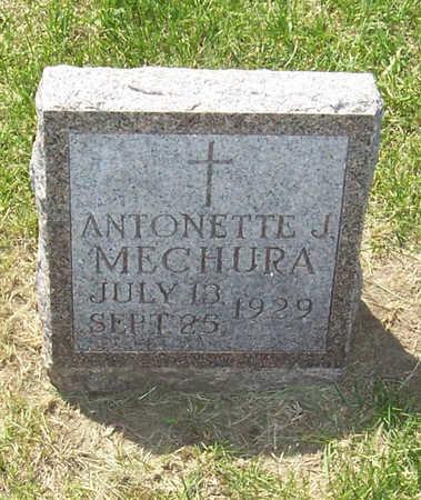 MECHURA, ANTONETTE J. - Shelby County, Iowa | ANTONETTE J. MECHURA