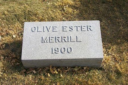 MERRILL, OLIVE ESTER - Shelby County, Iowa | OLIVE ESTER MERRILL