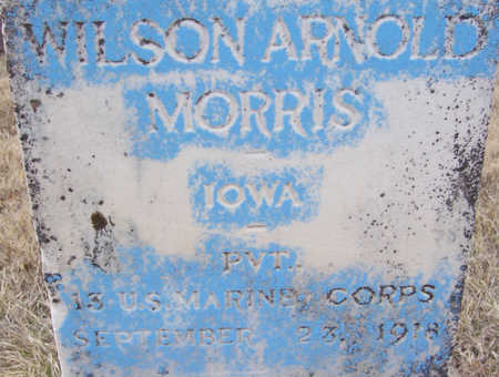 MORRIS, WILSON ARNOLD (MILITARY)(CLOSE-UP) - Shelby County, Iowa   WILSON ARNOLD (MILITARY)(CLOSE-UP) MORRIS