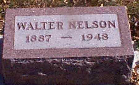 NELSON, WALTER - Shelby County, Iowa | WALTER NELSON