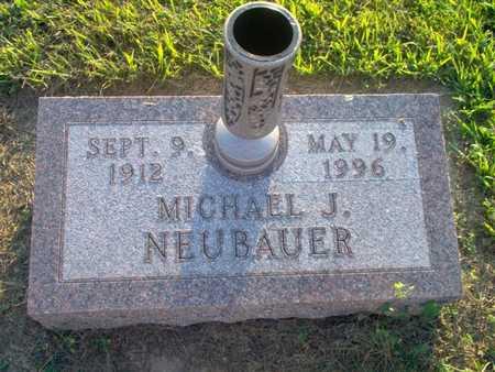 NEUBAUER, MICHAEL J. - Shelby County, Iowa | MICHAEL J. NEUBAUER