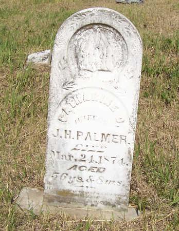 PALMER, CATHERINE - Shelby County, Iowa | CATHERINE PALMER