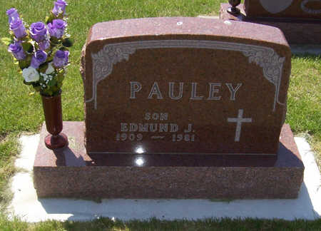 PAULEY, EDMUND J. - Shelby County, Iowa | EDMUND J. PAULEY