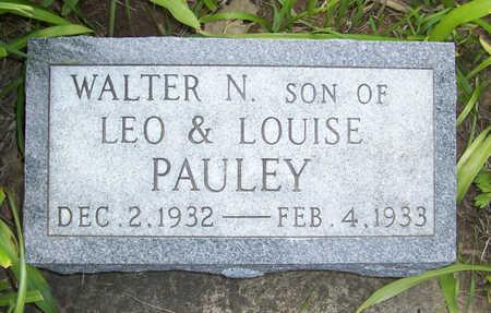 PAULEY, WALTER N. - Shelby County, Iowa | WALTER N. PAULEY