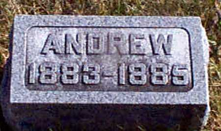 PETERSEN, ANDREW - Shelby County, Iowa | ANDREW PETERSEN
