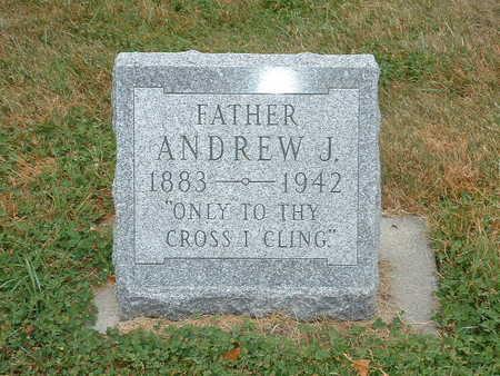 PETERSEN, ANDREW J - Shelby County, Iowa | ANDREW J PETERSEN