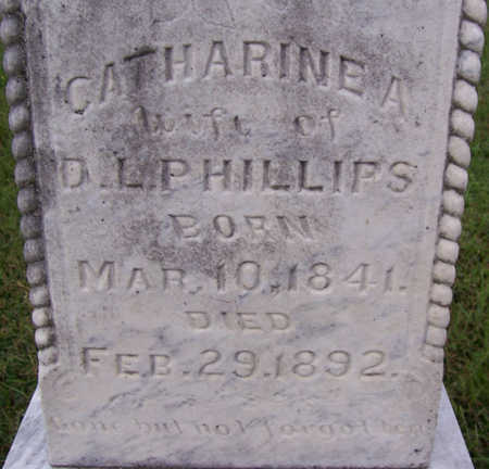 PHILLIPS, CATHERINE A. (CLOSE UP) - Shelby County, Iowa   CATHERINE A. (CLOSE UP) PHILLIPS