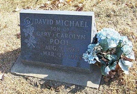 POOL, DAVID MICHAEL - Shelby County, Iowa | DAVID MICHAEL POOL