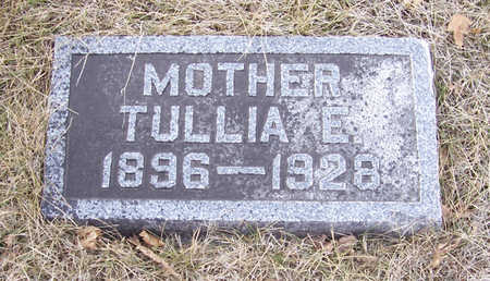 RIES, TULLIA E. (MOTHER) - Shelby County, Iowa | TULLIA E. (MOTHER) RIES