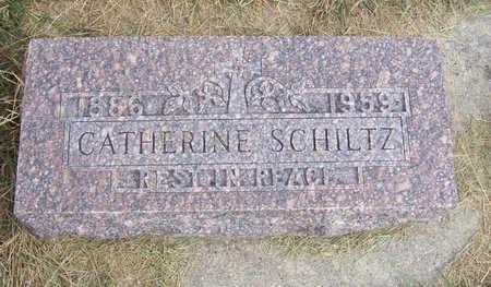 SCHILTZ, CATHERINE - Shelby County, Iowa | CATHERINE SCHILTZ