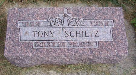 SCHILTZ, TONY - Shelby County, Iowa | TONY SCHILTZ