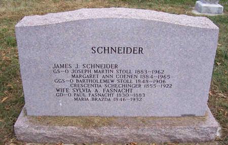 FASNACHT SCHNEIDER, SYLVIA ANN (REVERSE) - Shelby County, Iowa | SYLVIA ANN (REVERSE) FASNACHT SCHNEIDER