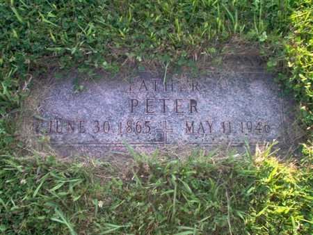STEIN, PETER - Shelby County, Iowa   PETER STEIN