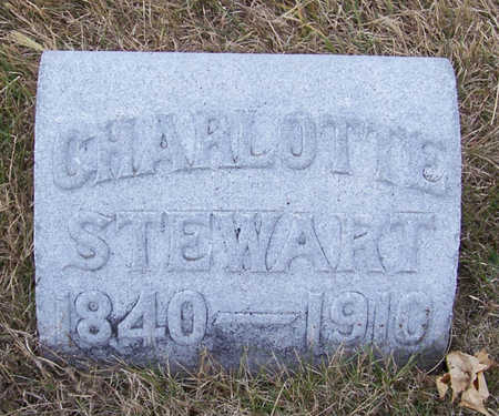 STEWART, CHARLOTTE - Shelby County, Iowa | CHARLOTTE STEWART
