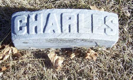 TATMAN, CHARLES M. - Shelby County, Iowa   CHARLES M. TATMAN