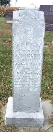 THELEN, ANNA M. - Shelby County, Iowa | ANNA M. THELEN