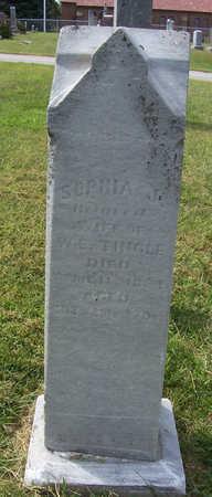 TINGLE, SOPHIA J. - Shelby County, Iowa | SOPHIA J. TINGLE