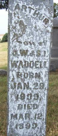 WADDELL, ARTHUR (CLOSE-UP) - Shelby County, Iowa | ARTHUR (CLOSE-UP) WADDELL