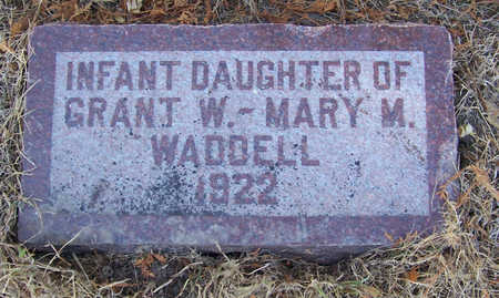 WADDELL, INFANT DAUGHTER - Shelby County, Iowa | INFANT DAUGHTER WADDELL