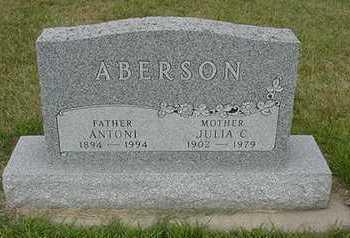 ABERSON, JULIA C. - Sioux County, Iowa | JULIA C. ABERSON