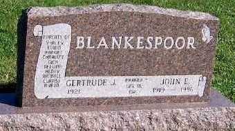BLANKESPOOR, JOHN E. - Sioux County, Iowa   JOHN E. BLANKESPOOR