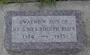 BLIEK, DWAYNE E. - Sioux County, Iowa   DWAYNE E. BLIEK